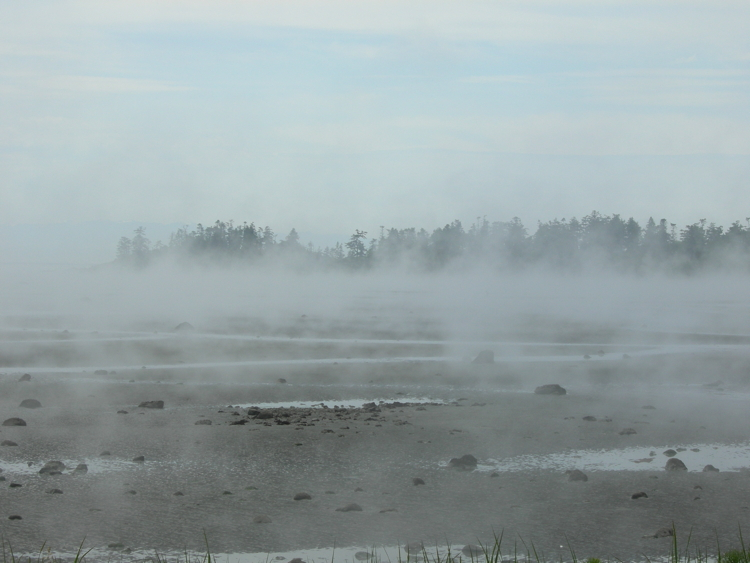 Fog clings to the mud flats of San Juan Island's False Bay.