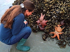 Alex and sea stars